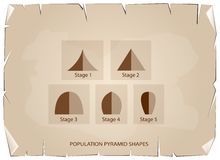 Different Types of Population Pyramids on Old Paper Background Royalty Free Stock Images