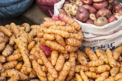 Different types of potatoes on display at Rodriguez market - La Paz, Bolivia royalty free stock photo