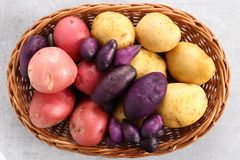 Different types of potatoes stock photo