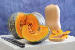 Different types of pumpkin and squash. Royalty Free Stock Image