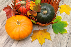 Different types of pumpkins and autumn leaves on a wooden table Royalty Free Stock Photos