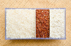Different types of Raw brown rice, Raw sticky rice and Raw rice Stock Photos