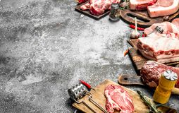 Different types of raw pork meat and beef with spices and herbs. On rustic background Royalty Free Stock Image