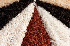Different types of rice on the old wooden table. Different types of rice on old wooden table, in the form of radial sectors Royalty Free Stock Image