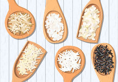 Different types of rice in wooden spoons. Basmati, wild, jasmine, long brown, arborio, sushi Royalty Free Stock Photos