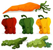 Different types of rotten vegetables. Illustration Stock Photos