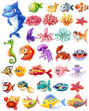 Different types of sea animals Royalty Free Stock Photo