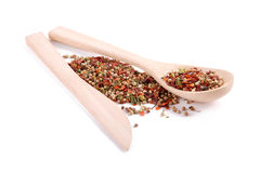 Different types of spices Stock Photos