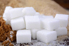 Different types of sugar Royalty Free Stock Photography