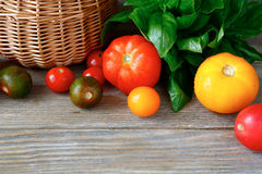 Different types of tomatoes with basil leaves Royalty Free Stock Photography
