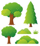 Different types of tree Royalty Free Stock Photography