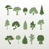 Different types of trees vector. Vector set of green trees simple form on a light background Royalty Free Stock Photography