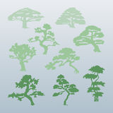 Different types of trees vector. Vector set of isolated silhouettes of green trees. Whimsical shapes of trees in the fog Stock Images
