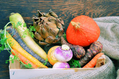 Different types of vegetables Stock Photography