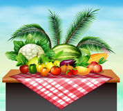 Different types of vegetables and fruit Stock Photo
