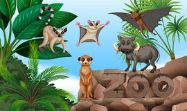 Different types of wild animals in the zoo. Illustration Stock Image