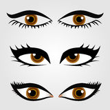 Different types of womens eyes Royalty Free Stock Photography