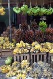 Colorful Bananas stock image