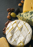 Different varieties of cheese. Stock Image