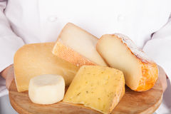Different varieties of cheese on a board in the hands from the cook Royalty Free Stock Photos