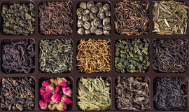 Different varieties of Chinese tea Stock Images
