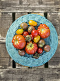 Different varieties colorful  tomatoes on blue basket Royalty Free Stock Image