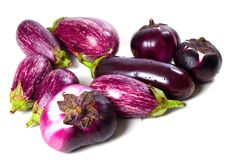 Different varieties of eggplant with water drops Stock Image