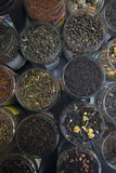 Different varieties elite green and black tea. Stock Photography