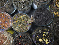 Different varieties elite green and black tea. Stock Images