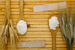 Different varieties of flour and starch Stock Photography