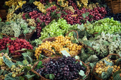 Different varieties of grapes Royalty Free Stock Image
