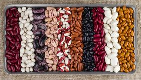 Different varieties of kidney beans against the background of the rough texture of burlap stock photo