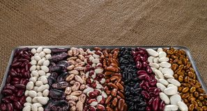 Different varieties of kidney beans royalty free stock images