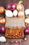 Different varieties of onions. On a kitchen board and bagging Stock Photography