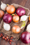 Different varieties of onions. On a kitchen board and bagging Royalty Free Stock Photo