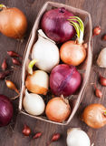 Different varieties of onions. On a kitchen board and wooden surface Royalty Free Stock Images