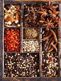Different varieties of peppercorn and spices Royalty Free Stock Image