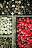 Different varieties of peppercorns Royalty Free Stock Images