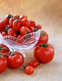 Different varieties of tomatoes Stock Photography