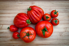 Different varieties of tomatoes stock image