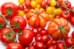 Different varieties of tomatoes Royalty Free Stock Photography