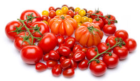 Different varieties of tomatoes Stock Photos