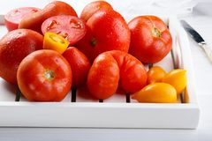 Different varieties of tomatoes on a white tray. Colorful red and yellow fresh ripe tomatoes stock photos