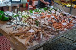 Different variety of fresh fish on the fish market in Catania. Different variety of fresh fish, calmari, shrimps on the fish market in Catania, Sicily royalty free stock images