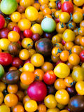 DIFFERENT VARIETY OF FRESH TOMATOES. IN A MARKET STREET IN PROVENCE, FRANCE Royalty Free Stock Photos