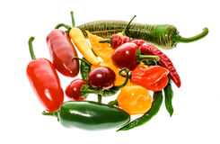 Different variety of hot peppers or chilies, isolated on white. Royalty Free Stock Photo