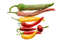 Different variety of hot peppers or chilies, isolated on white. Royalty Free Stock Photography