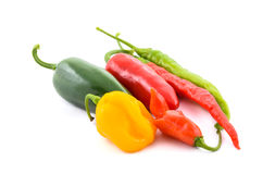 Free Different Variety Of Chillies Stock Photography - 61209762