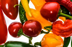 Free Different Variety Of Hot Peppers Or Chilies, Isolated On White. Royalty Free Stock Image - 77137836