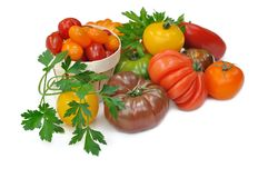 Different variety of tomatoes Stock Images